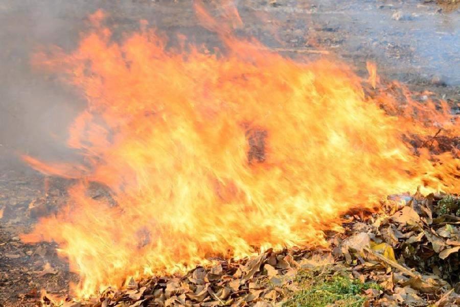 Resultado de imagem para Colocar fogo em lixo ou no quintal de casa é crime e pode levar à prisão