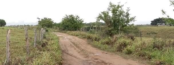 Corpo é encontrado em área de desova em bairro da Serra - Jornal Folha Vitória