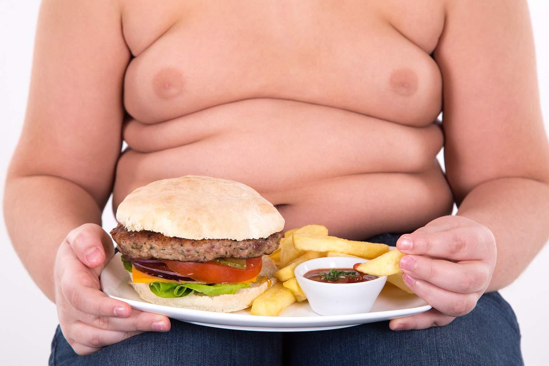 Resultado de imagem para Criança obesa