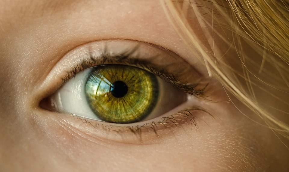 Conheça os riscos gerados a visão com o uso de óculos falsificados d4baf0f63d