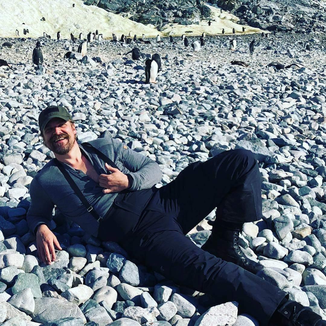 Danca. Foto do site da Folha Vitória que mostra Ator de 'Stranger Things' dança com pinguins na Antártida