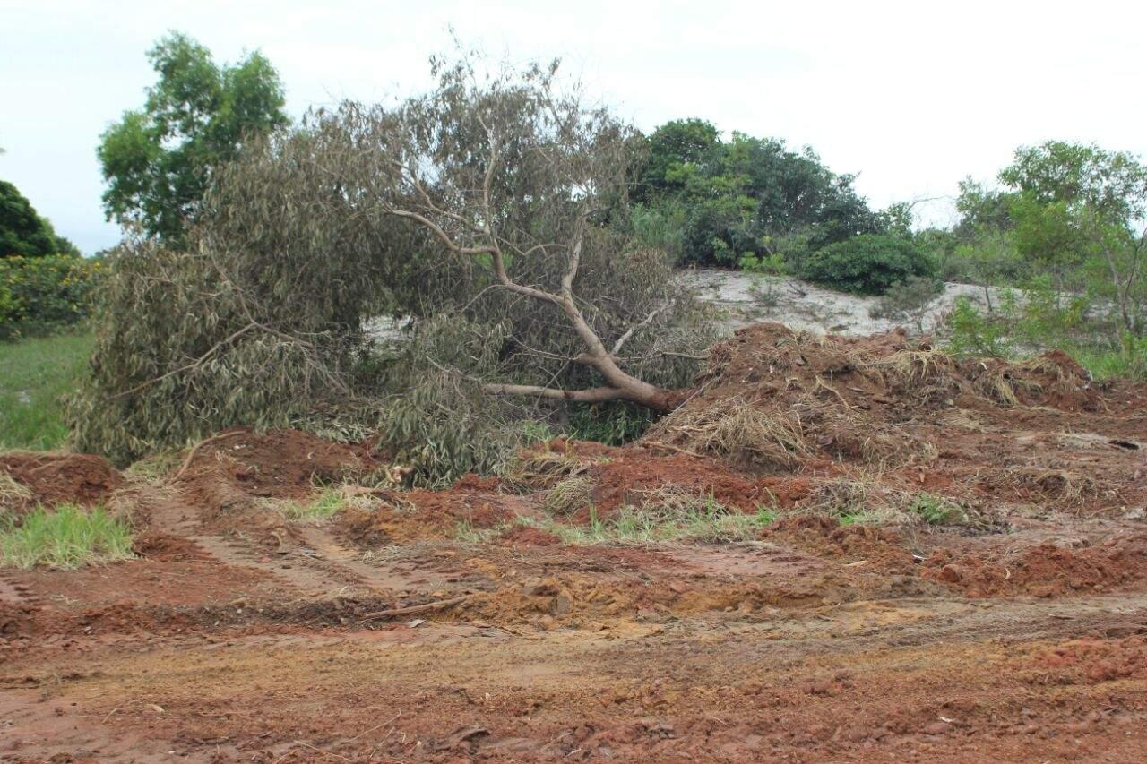 Crime ambiental é descoberto após operação em Guarapari