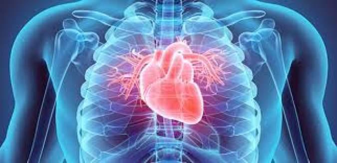 Estudo revela que coronavírus também causa morte por insuficiência cardíaca – Folha Vitória