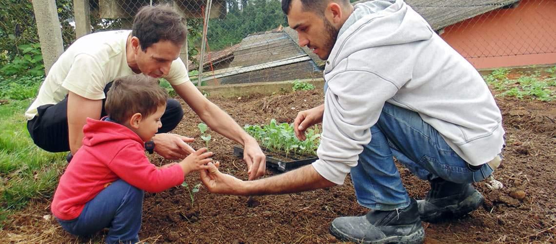 Crianças dão exemplo e cuidam de horta em escola pública de Venda Nova do Imigrante