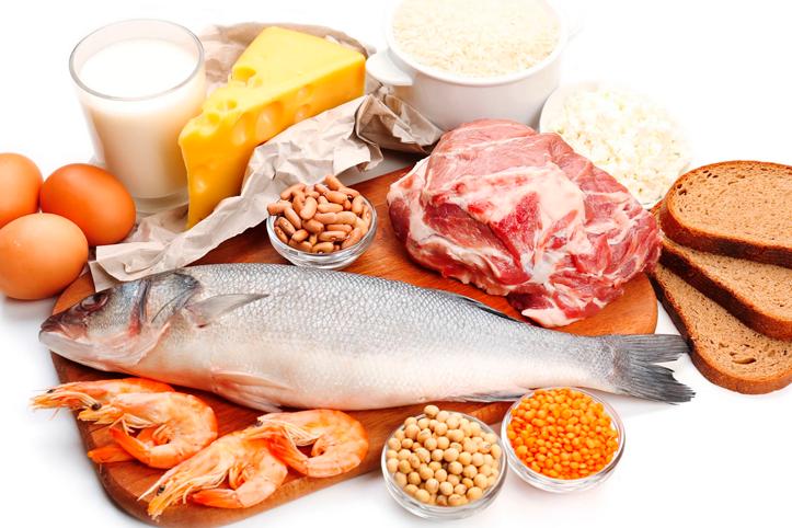 Dieta de proteina bajar de peso
